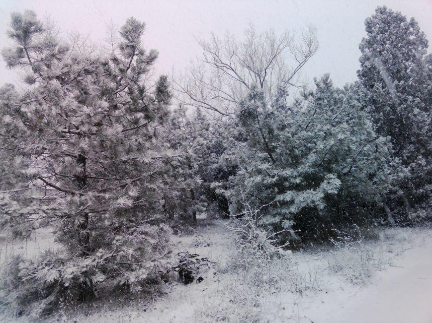 Снегопад в Бердянске (Фоторепортаж), фото-3