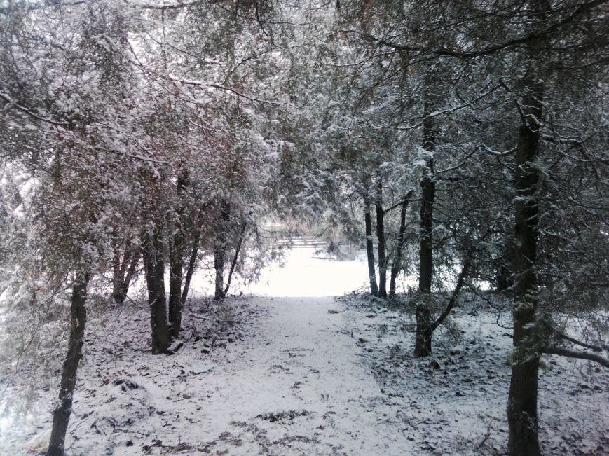 Снегопад в Бердянске (Фоторепортаж), фото-1