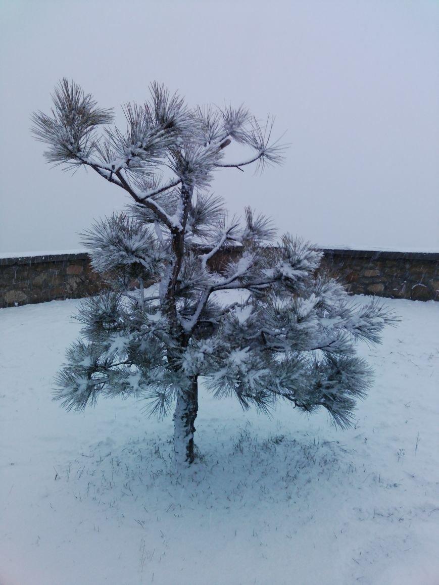 Снегопад в Бердянске (Фоторепортаж), фото-16