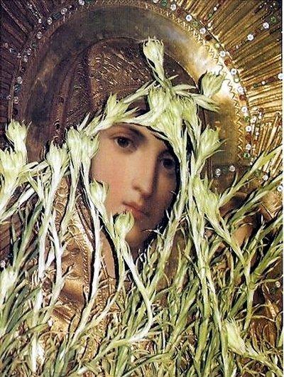 Почаївська ікона Богоматері - серед 12 чудотворних ікон України (фото) - фото 7