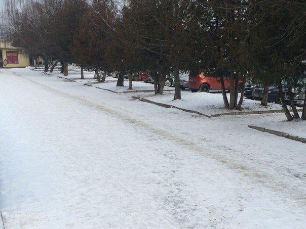 Снежный апокалипсис: перезагрузка (ФОТО) (фото) - фото 7