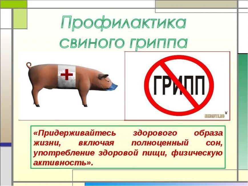 Свиной грипп «подкосил» уже 17 ульяновцев (фото) - фото 1
