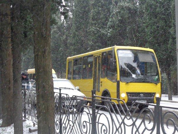 Такого снегопада... В Ялте как всегда не ждали (фото) - фото 6