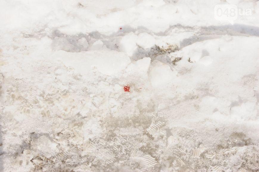 Опубликованы фото с места расстрела Владислава Штефана (ФОТО) (фото) - фото 1