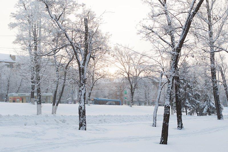 Белые дни. Белгороду осталось совсем недолго находиться под снегом перед скорым потеплением (фото) - фото 9
