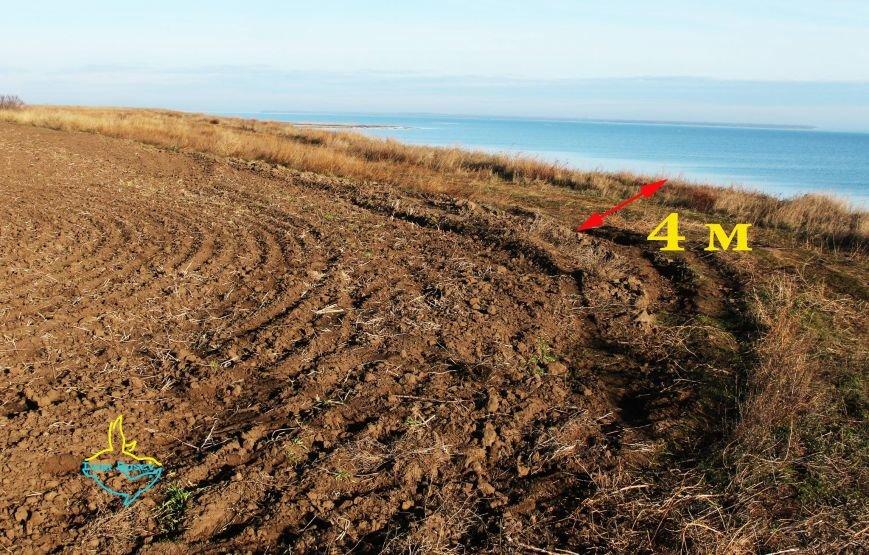 Одесский эколог наткнулся на интересную археологическую находку (ФОТО) (фото) - фото 1