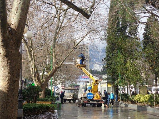 В Ялте на ул. Пушкинской устанавливается особый отличительный знак (фото) - фото 1