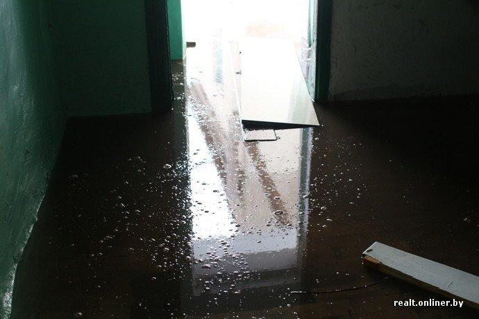 Подъезд в Полоцке превращается в море. «В ЖЭСе считают, что это нормально, а ливневый колодец чистят, когда петух клюнет» (фото) - фото 2