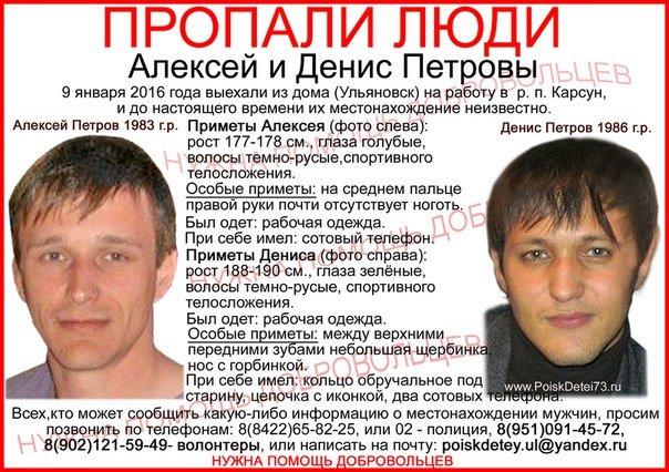 Пропавших в Ульяновской области братьев будет искать детектив, фото-1