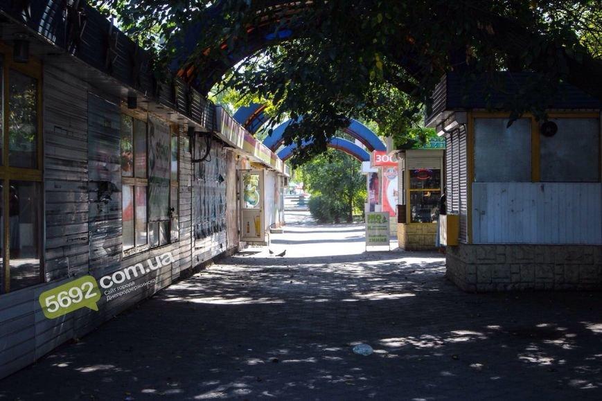 На рассмотрении городских властей Днепродзержинска находятся петиции о Николенко, трамваях и «генделиках» (фото) - фото 4