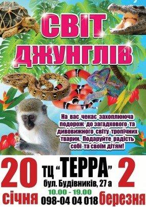 cisafisha_145268570410