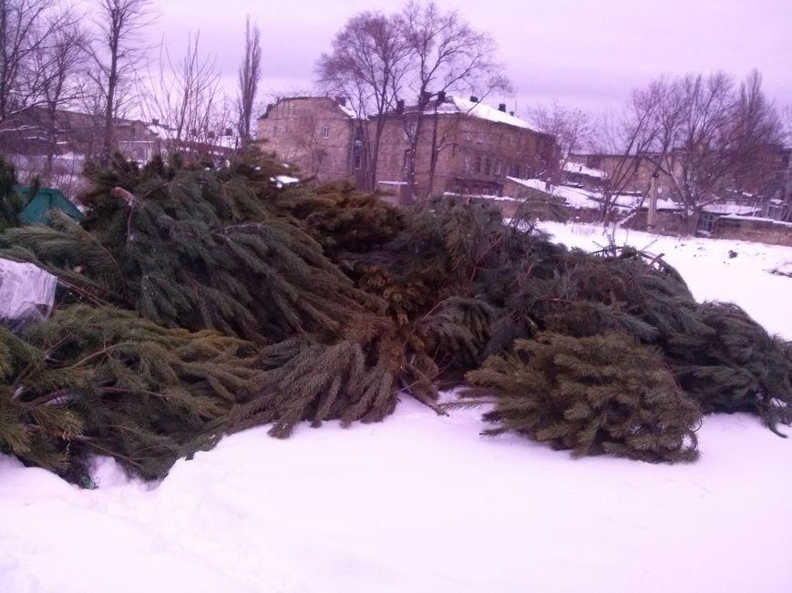 1e77744e5a7d3e300ae65a2c4e2ca9cb Одесситы новогодними ёлками помогли питомцам зоопарка
