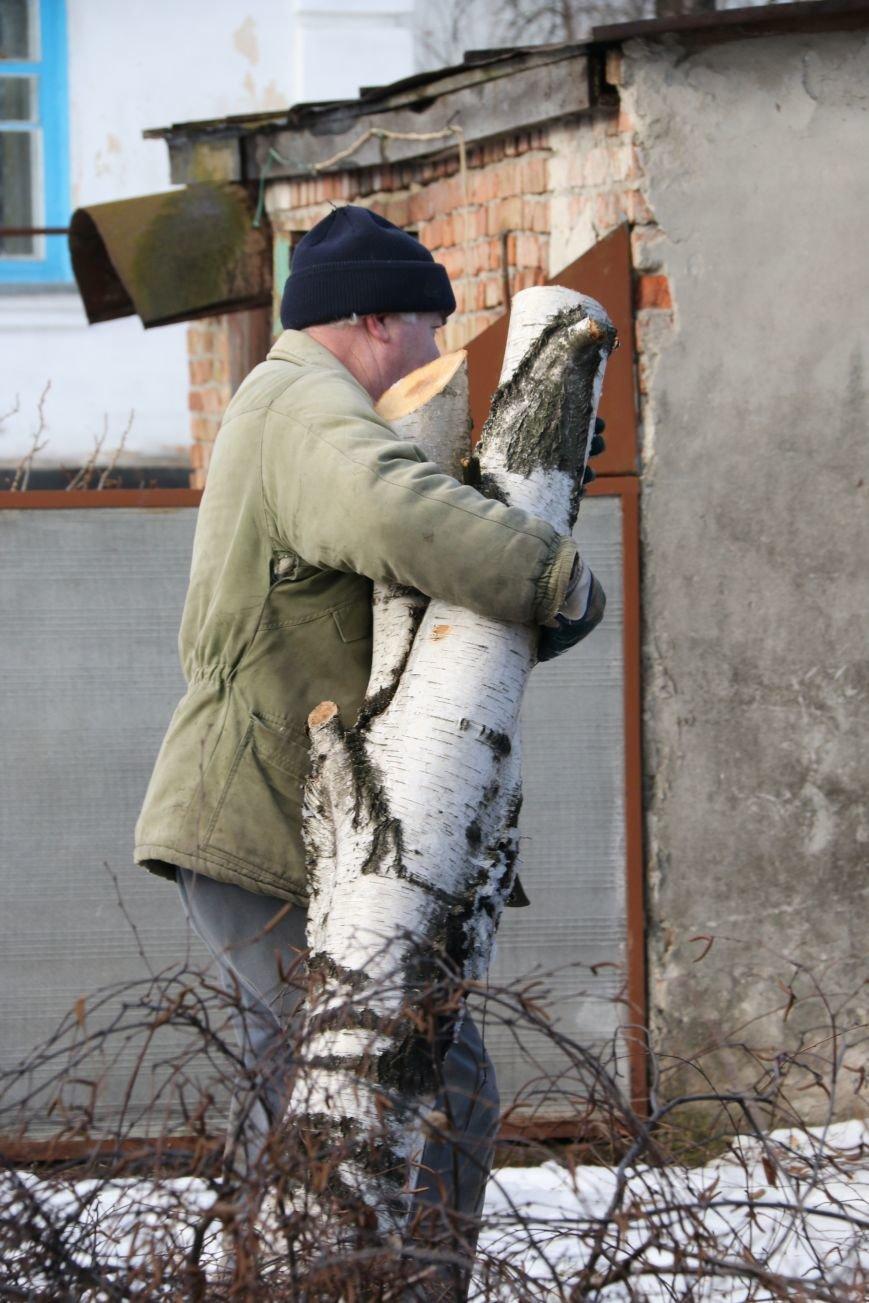 КП «Зеленбуд» будет жаловаться на энергетиков за обрезку деревьев в прокуратуру, фото-8