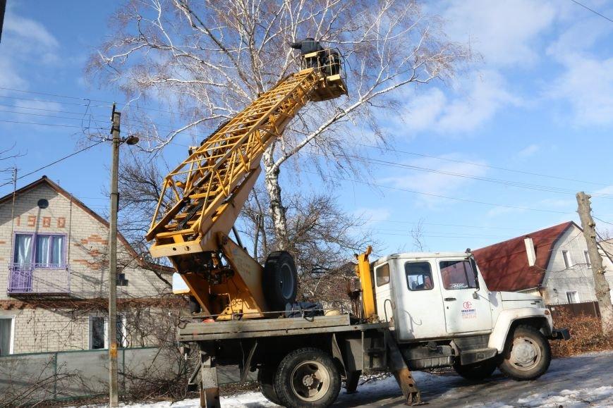 КП «Зеленбуд» будет жаловаться на энергетиков за обрезку деревьев в прокуратуру, фото-2