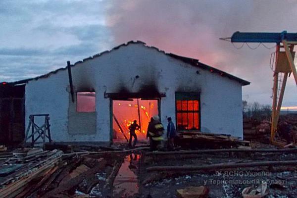 На Тернопільщині виникла масштабна пожежа на пилорамі (фото, відео) (фото) - фото 1