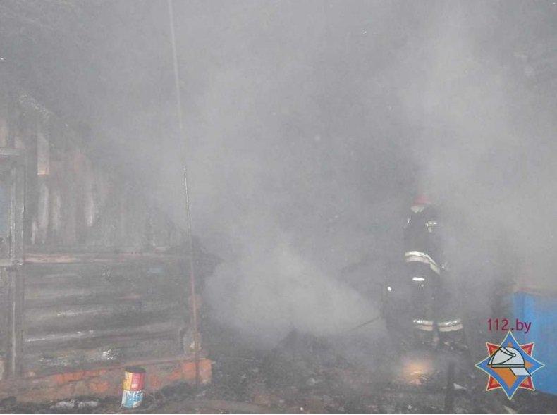 На пожаре в Оршанском районе погибли отец и сын (фото) - фото 2