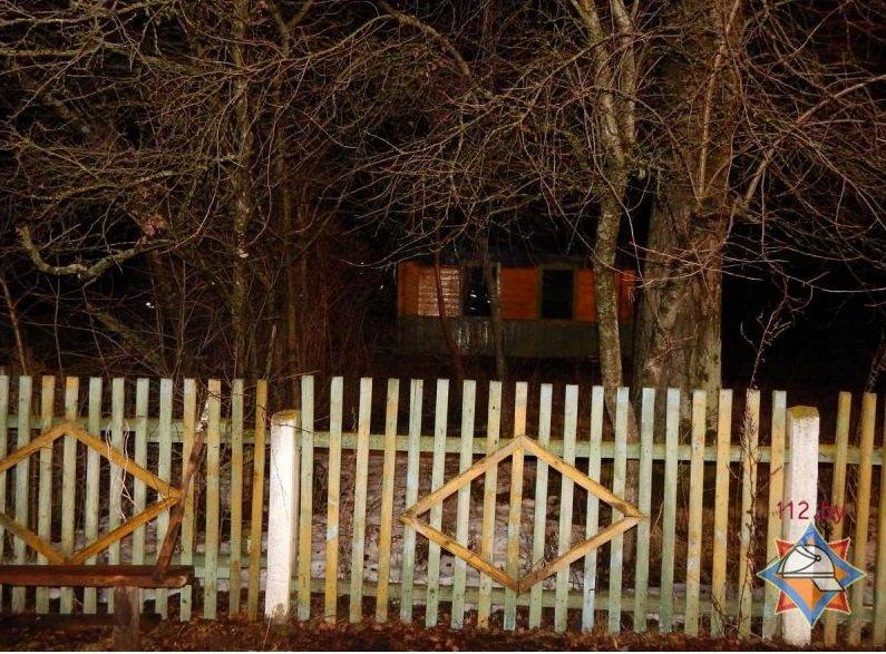 На пожаре в Оршанском районе погибли отец и сын (фото) - фото 1