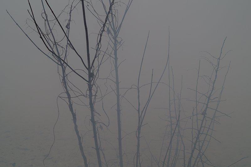 В Белгороде по улице Сумской сгорела мебельная мастерская (фото) - фото 6