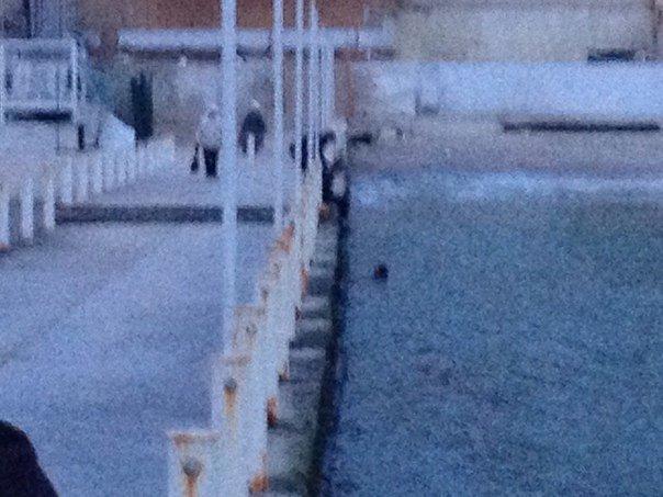 В одесской Аркадии спасали юного ныряльщика в море за телефоном (ФОТО) (фото) - фото 1
