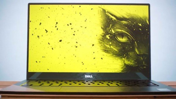 Рисунок одесского кота станет заставкой нового ноутбука (ФОТО) (фото) - фото 1