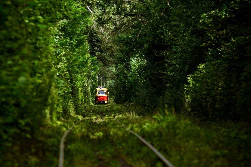 ФОТО_трамвай