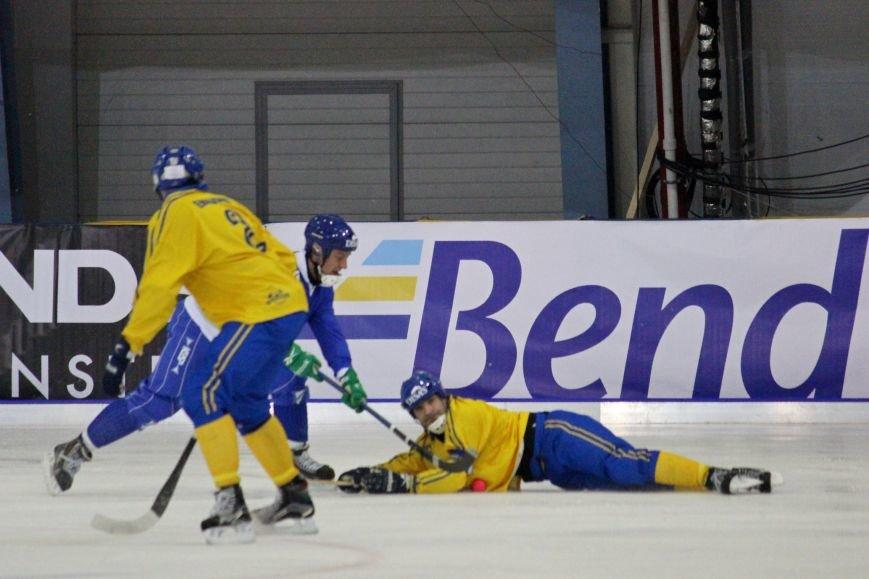 Финны стали авторами главной сенсации Чемпионата мира по бенди, фото-13