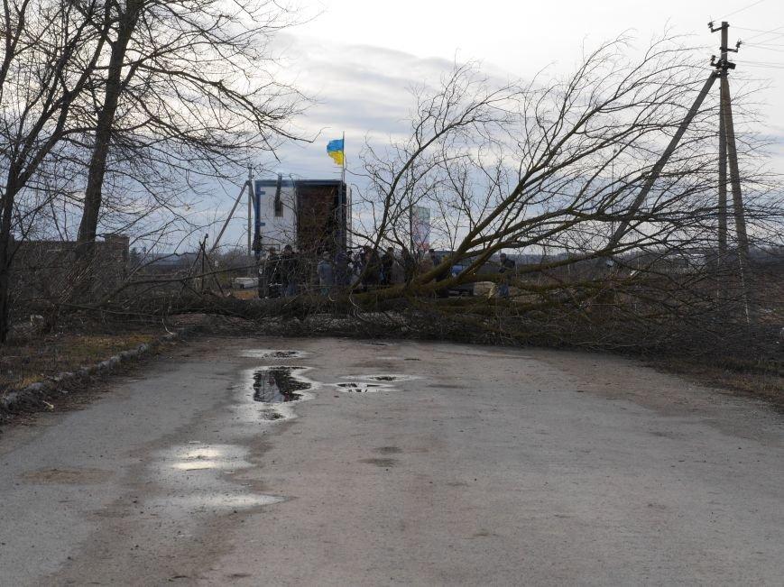 На Тернопільщині в'їзд до агропідприємства заблоковано деревами (ФОТО, ВІДЕО) (фото) - фото 3