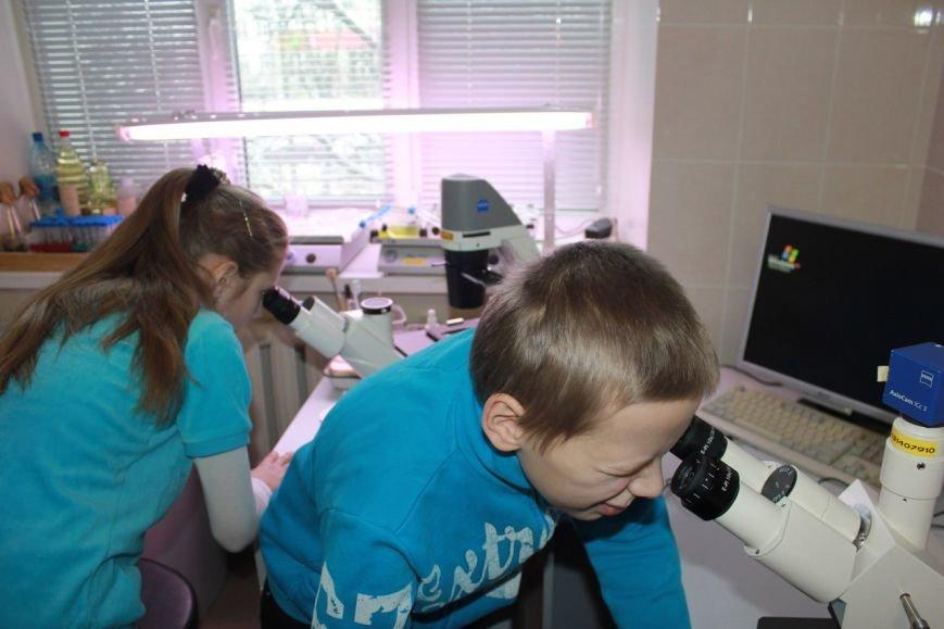 Сыктывкарские биологи приоткрыли тайны своих исследований, фото-7