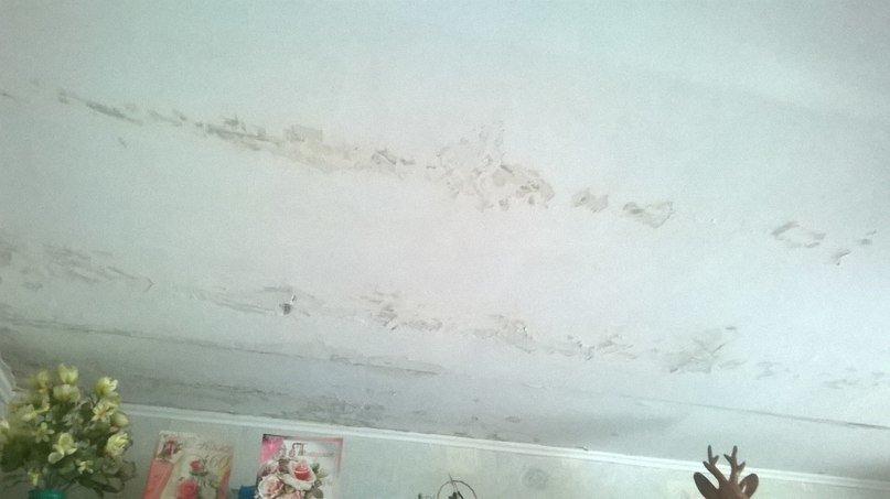 Жители дома 41 по ул.Холодногорской в Сумах более 10 лет просят отремонтировать лифт и крышу (ФОТО) (фото) - фото 1