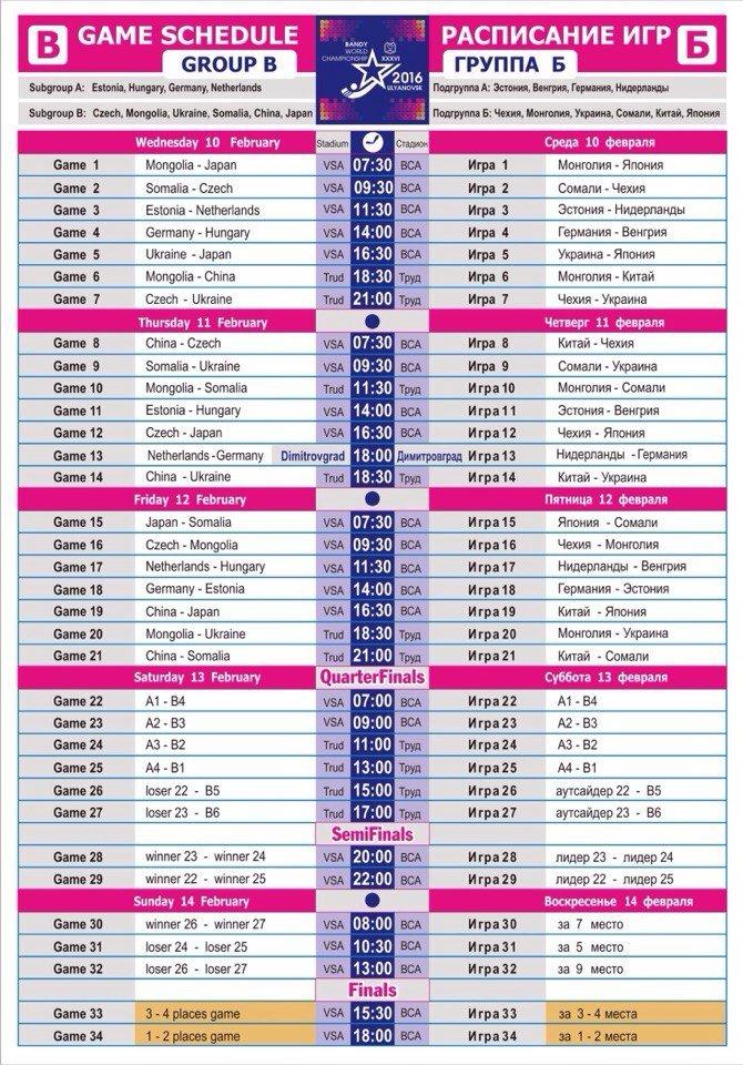 Болельщики смогут бесплатно ходить на игры 2-ой группы ЧМ по бенди. РАСПИСАНИЕ (фото) - фото 1