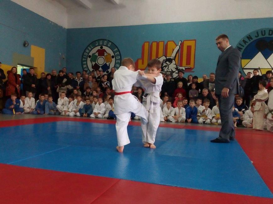 Большое Доброполье на чемпионате по дзюдо представляли 20 спортсменов (фото) - фото 1