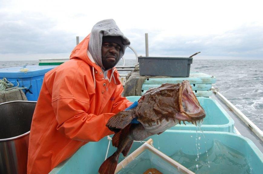 10 малоизвестных рыб-убийц (фото) - фото 5