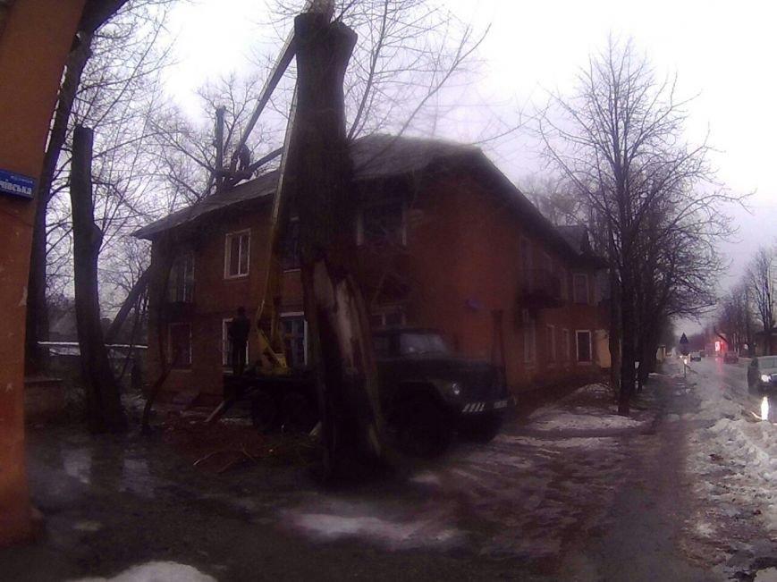 В Кривом Роге рухнувшее дерево разрушило кровлю и несущую балку жилого дома (ФОТО) (фото) - фото 1
