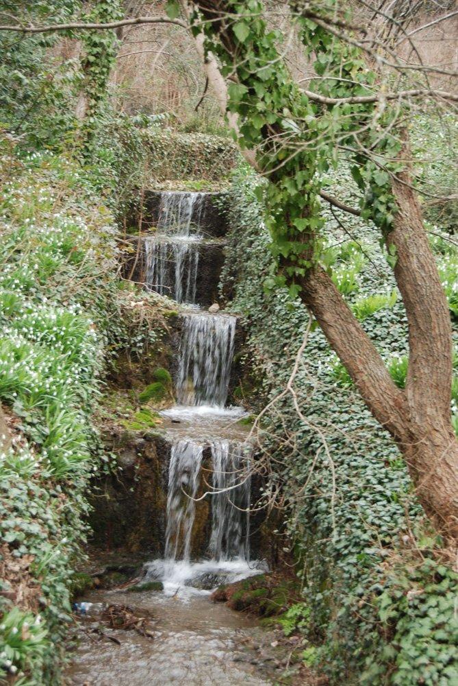 Никитский сад традиционно откроет двери для влюблённых 14 февраля, фото-1