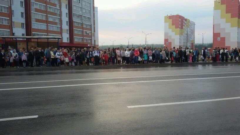 А троллейбуса все нет. Когда запустят новые маршруты в Витебске (фото) - фото 1