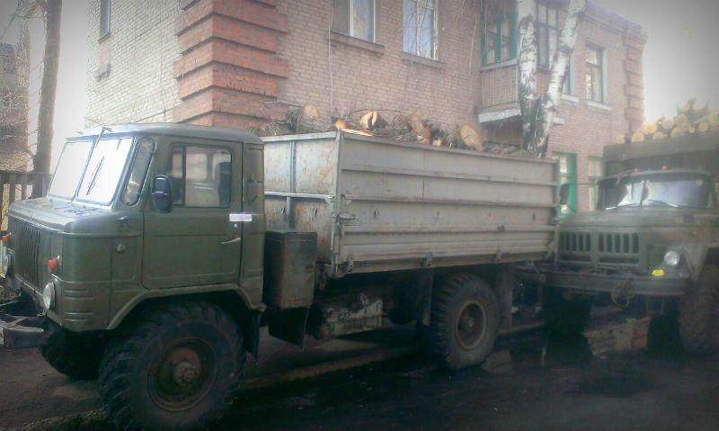 В Славянске уничтожают лес (фото) - фото 1