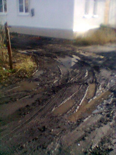 Вандализм по-макеевски: соседи уничтожили клумбу на придомовой территории (фото) - фото 2