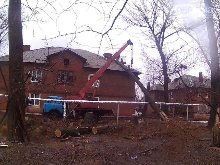 В Кривом Роге: дерево упало на дом, ВАЗ влетел в Hyundai, а криворожанин спустя год после отказа от мобилизации, пошел в армию (фото) - фото 1