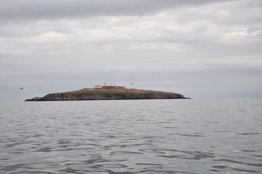 ee342c70b7e0c3208ad7a66a37de15cb На острове Змеином одесские пограничники и военные моряки усилили оборону
