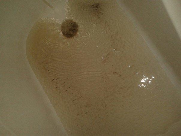 Какую воду пьют жители Макеевки - отчет об исследованиях качества воды (фото) - фото 2