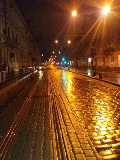 Вночі у центрі Львова автомобіль зруйнував два дерева та в'їхав у турнікет (ФОТО), фото-2
