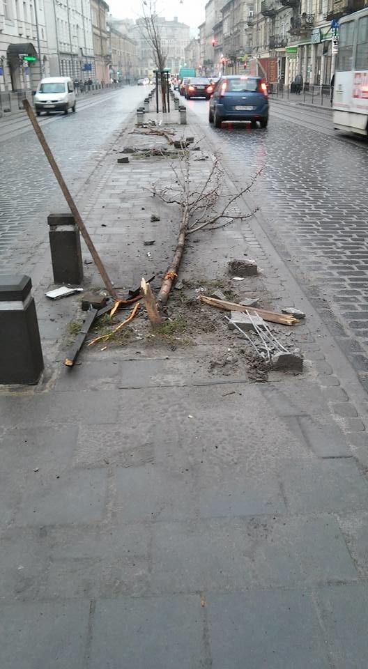 Вночі у центрі Львова автомобіль зруйнував два дерева та в'їхав у турнікет (ФОТО), фото-4