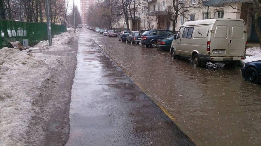 В Троицк пришла нежданная весна (ФОТО), фото-7