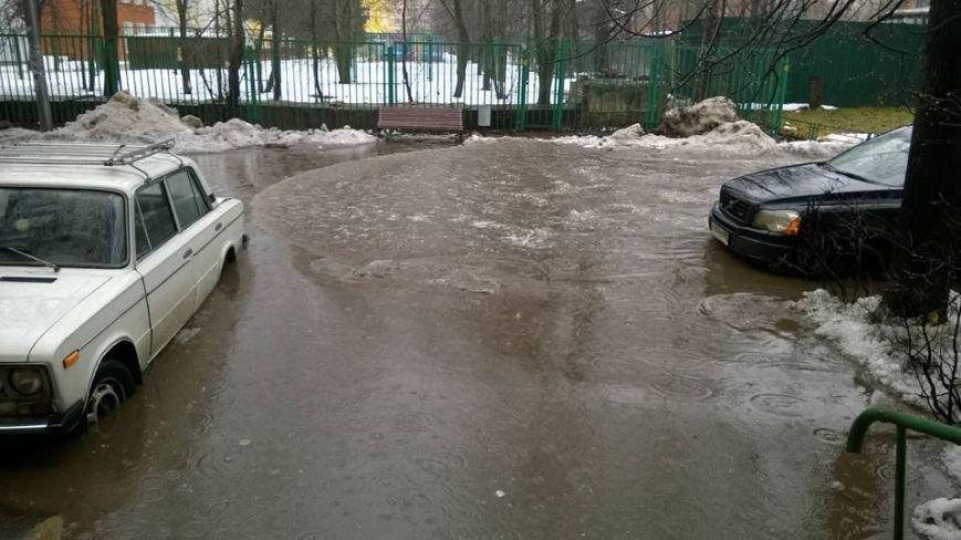 В Троицк пришла нежданная весна (ФОТО), фото-6
