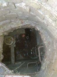 Мариупольские спасатели вытащили собаку из люка (ФОТО) (фото) - фото 1