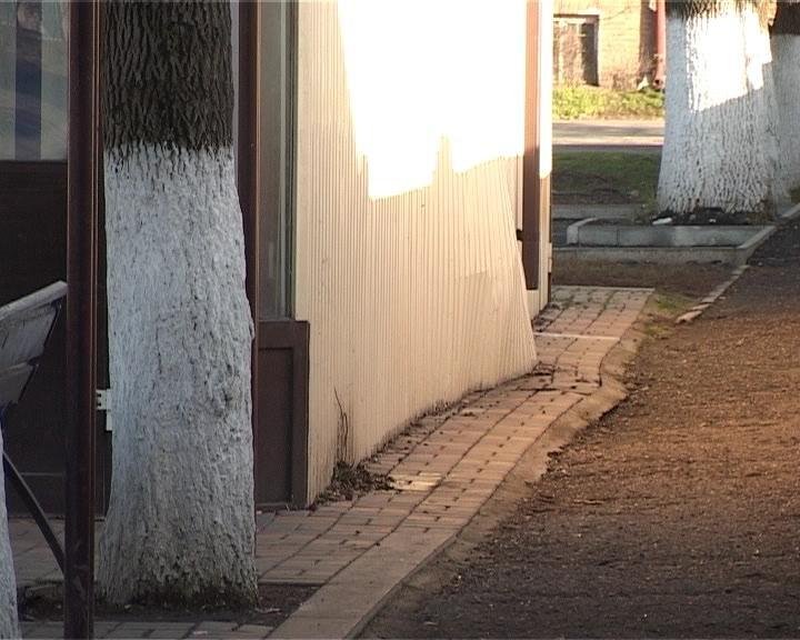 В Армавире водитель BMW не справился с управлением и врезался в цветочный павильон (фото) - фото 1