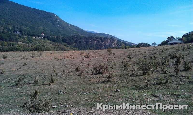 Британская компания из офшора получила участок земли на ЮБК в районе «Поляны сказок», фото-5
