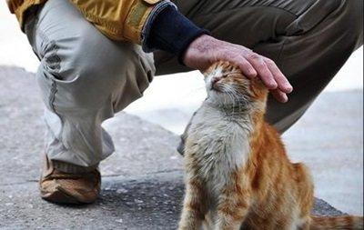 Як святкувати День спонтанного прояву доброти? (фото) - фото 1