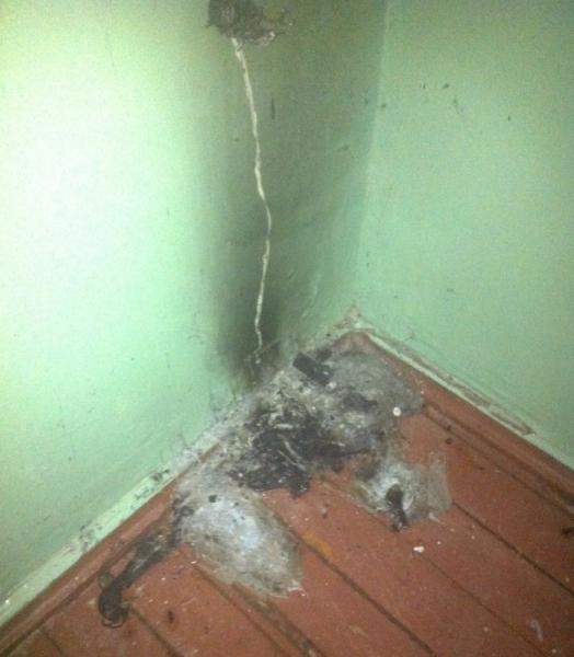 Ульяновцы сами потушили пожар в доме, фото-1