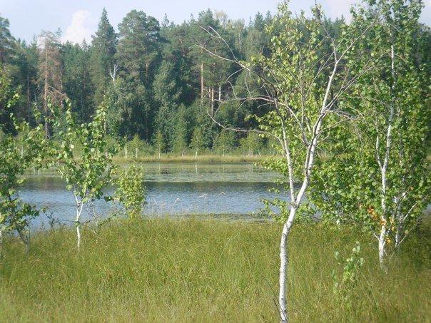 Ульяновскому Поганому озеру исполнилось 40 лет (фото) - фото 1